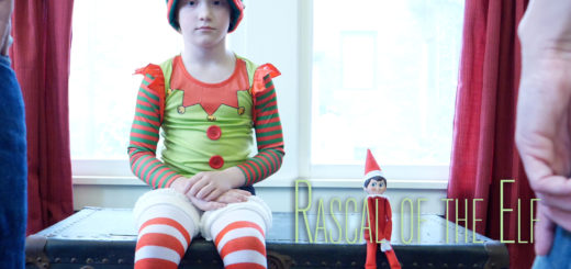 Rascal of the Elf